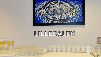 Permalink to: Lillesalen