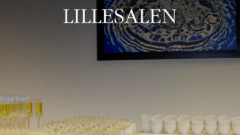 Permalink to: Lillesalen